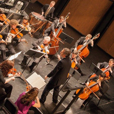 Gateway Chamber Orchestra: Opening Night with Schubert and Haydn thumbnail