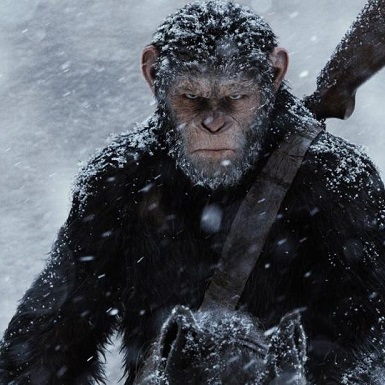 War for the Planet of the Apes (PG-13) thumbnail