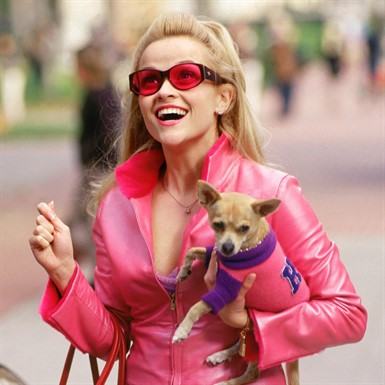 Legally Blonde (PG-13) thumbnail